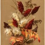 Botanical paintings of Ellen Thayer Fisher