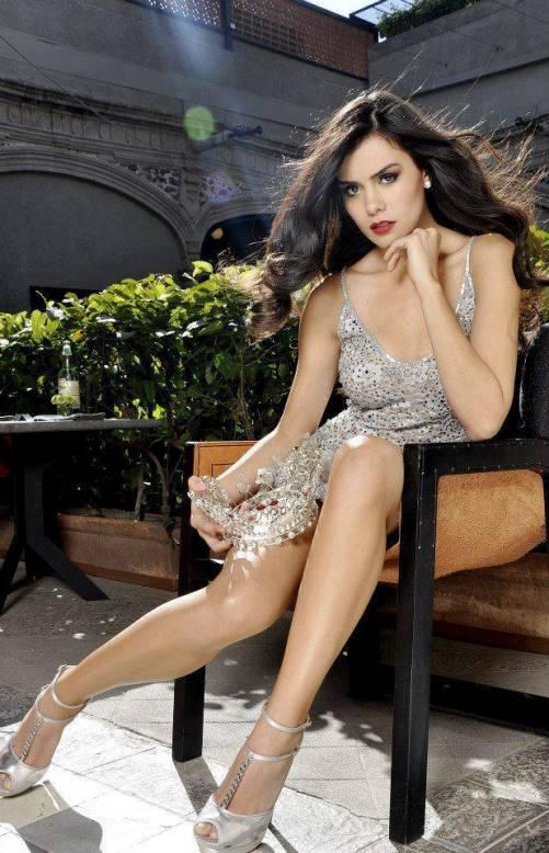 Miss Universe 2013 participants