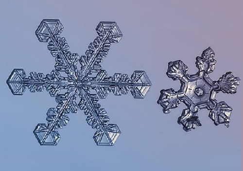 Snowflake photographer Alexey Kljatov