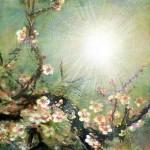 Painting light Lak Buni
