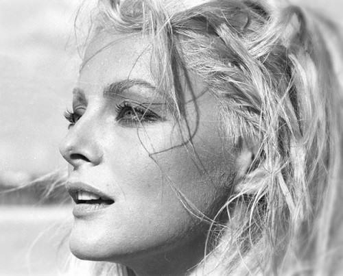 Beautiful Italian actress Virna Lisi