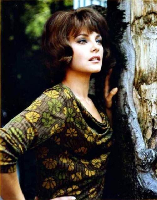 Stunningly beautiful Italian actress Virna Lisi
