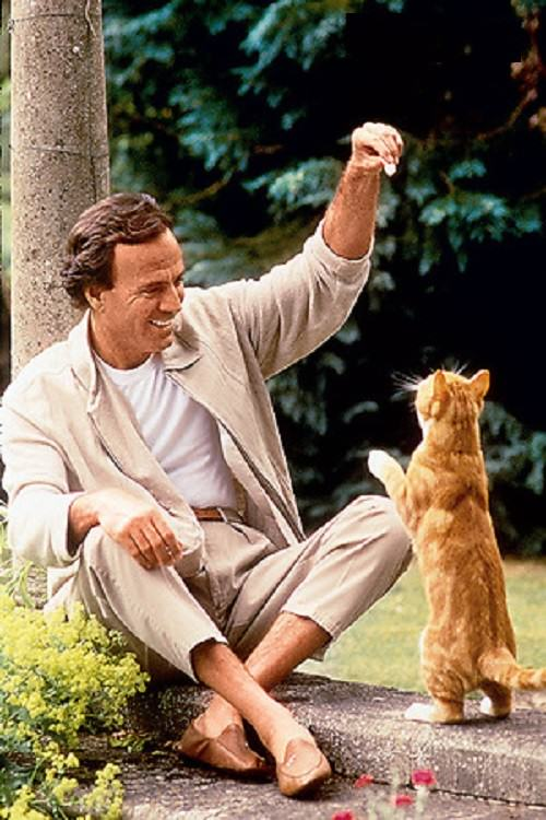 Loving life Julio Iglesias. I am happy every day, and greedy for life