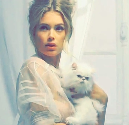 With a white cat