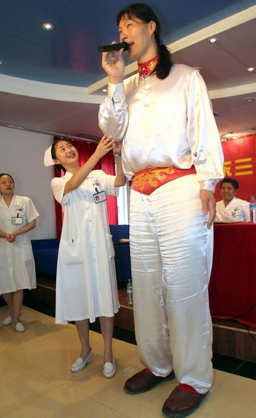 Chinese tallest woman Yao Defen (July 15, 1972 – November 13, 2012) was recognized by Guinness World Records 7 ft 8 in tall (2.33 m)