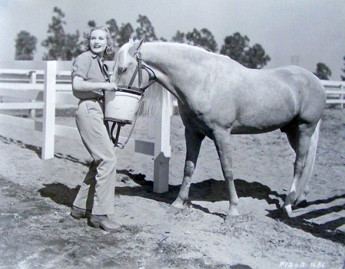Carole feeding her horse at the ranch