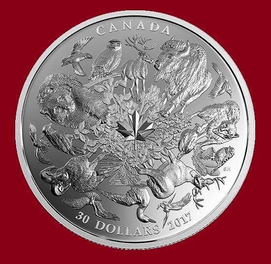A silver coin of $ 30 with a picture of animals and plants in Canada. In the center is the maple leaf, which combines the composition