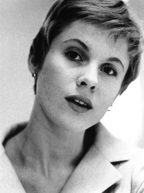 Charming Bibi Andersson