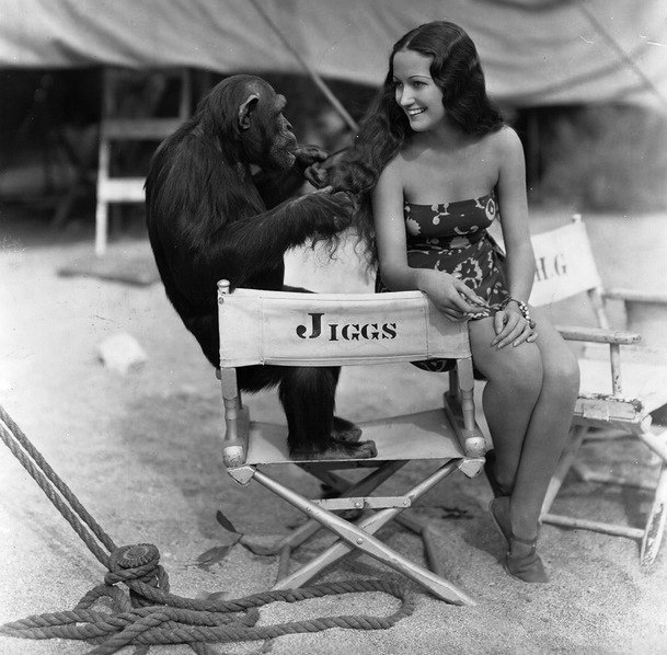 Chimp Jiggs and Dorothy in Palm Springs on the set of Her Jungle Love, 1937. Paramount