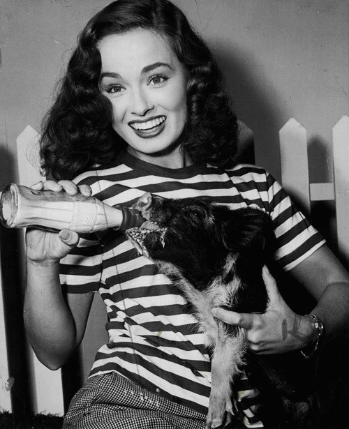 Feeding her pet Porky, beautiful actress Ann Blyth. 1940s