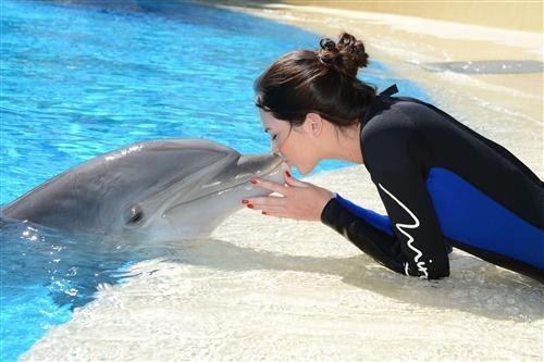 Meeting with a dolphin, Kendall Jenner