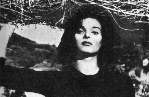 Under the Olive Tree (1950)