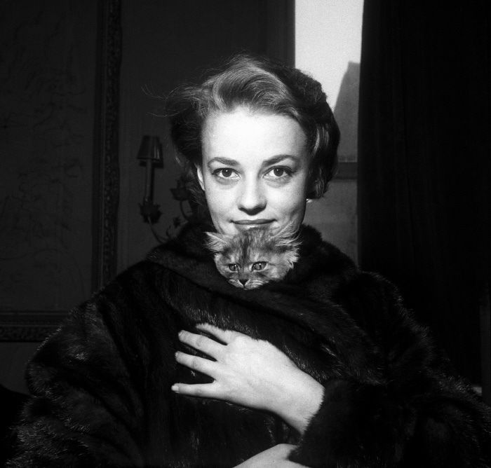 With a kitten, Jeanne Moreau